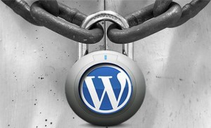 7 steps to secure your wordpress site