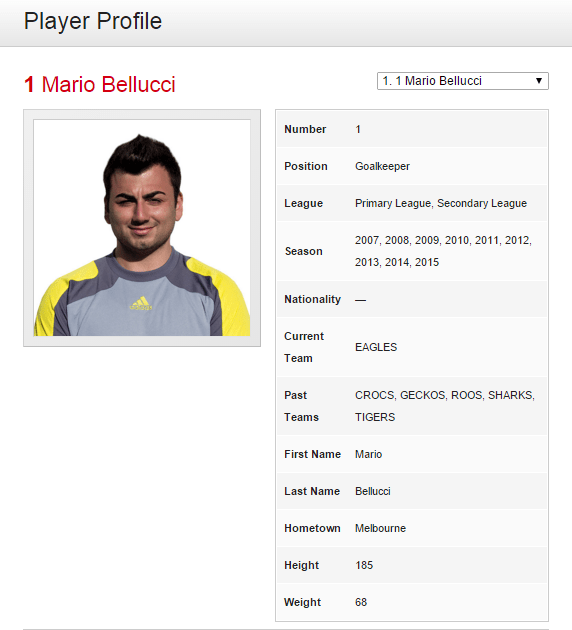FootballClub player profile