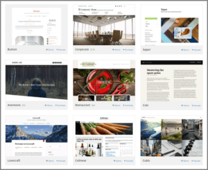 Different WP themes