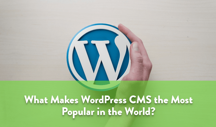 What Makes WordPress CMS the Most Popular CMS in the World?