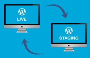 Staging-Environment-for-a-WordPress-Site