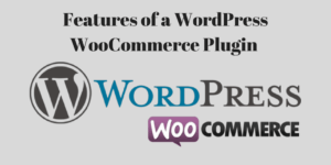 Features of a WordPress WooCommerce Plugin