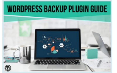 Introducing: The Ultimate Guide To Choosing Your Backup Plugin