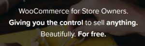 woocommerce_for_store_owners