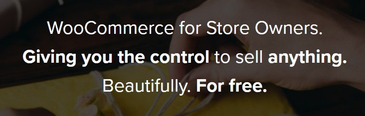 woocommerce for store owners