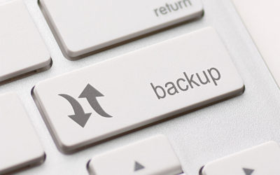 BlogVault Support for Multisite WordPress Backups