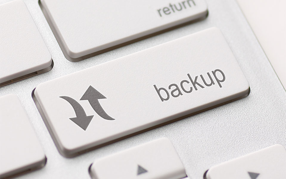 Multisite WordPress Backups