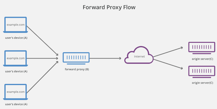 Process of a Reverse Proxy system