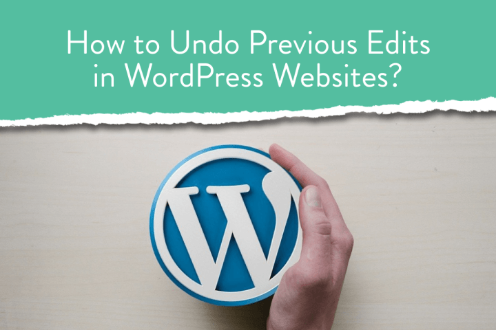 How to Undo Previous Edits in WordPress Websites?