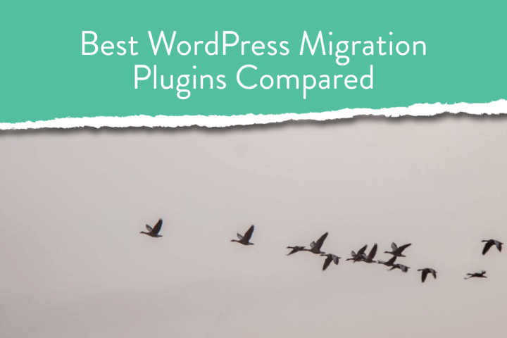 10 Best WordPress Migration Plugins in 2021(Compared)