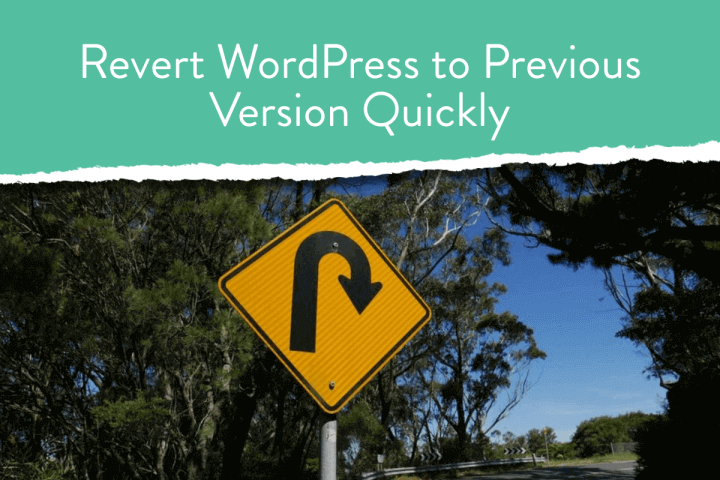Revert WordPress to Previous Version Quickly