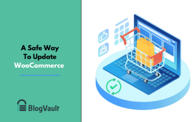 How to perform WooCommerce Update – Beginners Guide